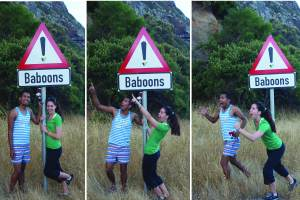 Baboons! Run!
